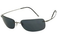 אפור/עדשה אפור Polarized, קוד צבע: 6130